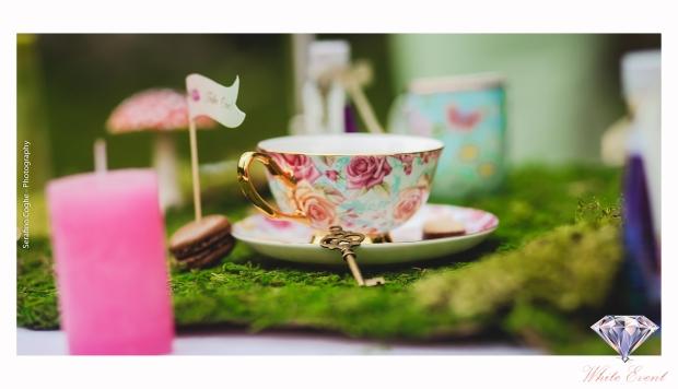 Alice in Wonderland 159